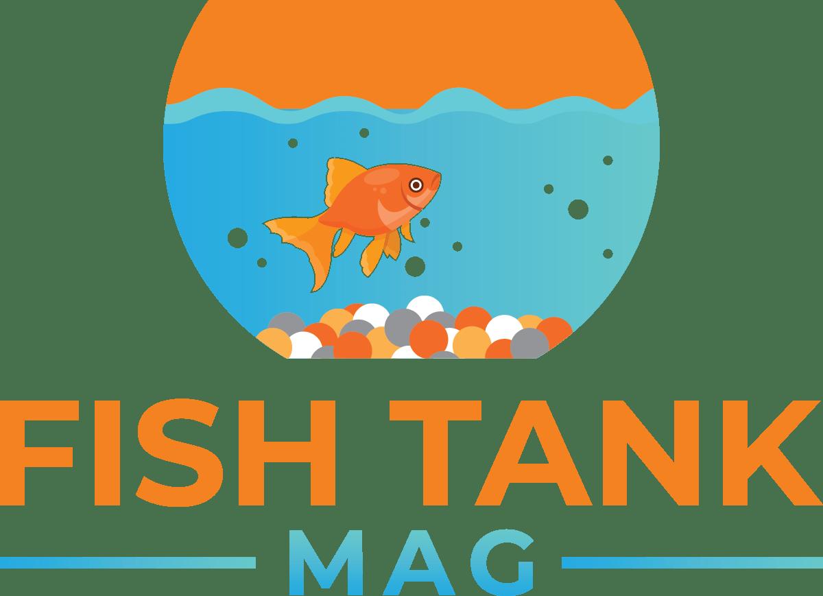 Fish Tank Magazine